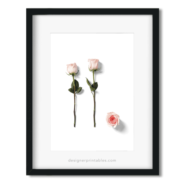 free printable wall art, free download poster roses, rose poster, flower poster, floral decor, free floral wall art